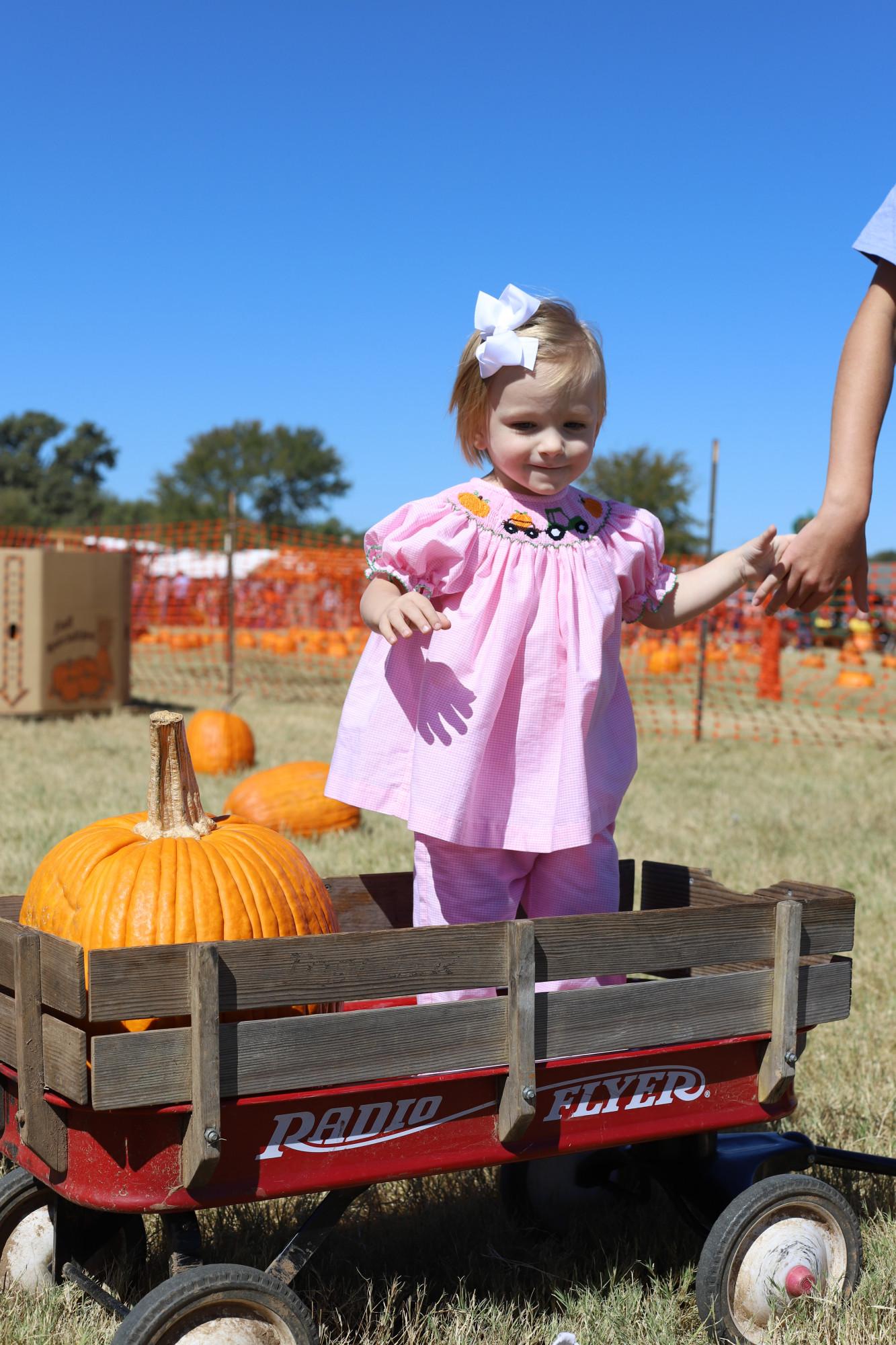 pumpkin patch dallas
